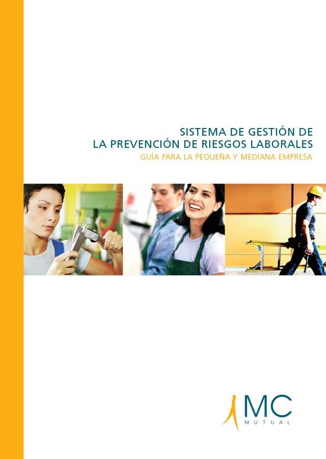 0_5-sistema-de-gestion-de-la-prevencion-de-riesgos-laborales_-guia-para-la-pequena-y-mediana-empresa