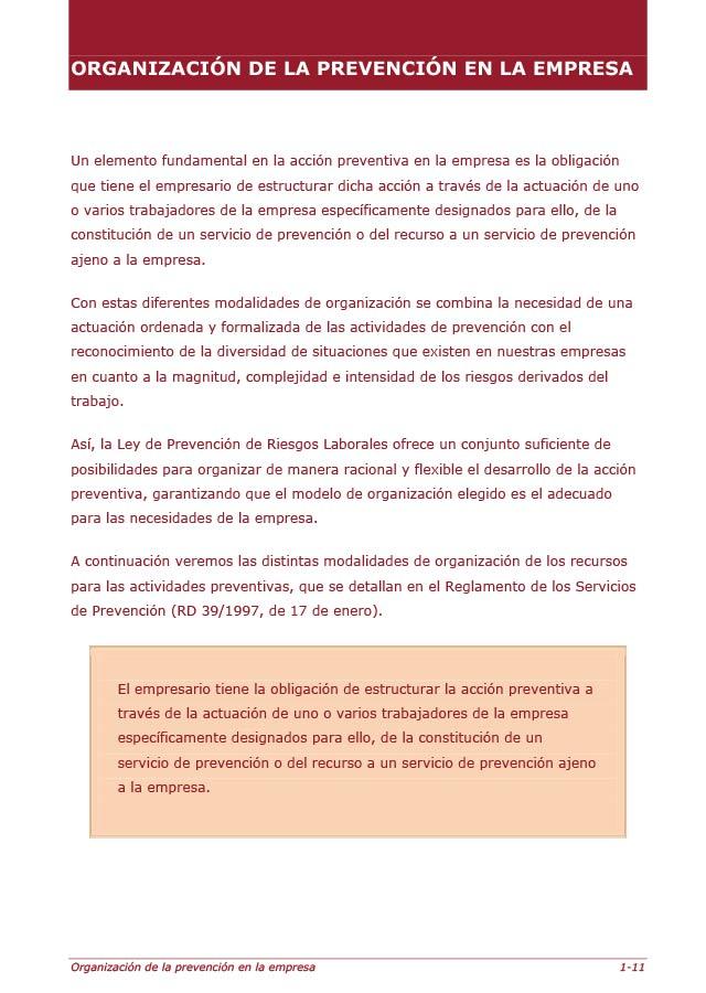 0_6-organizacion-de-la-prevencion-en-la-empresa